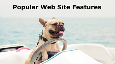 Popular Web Site Features