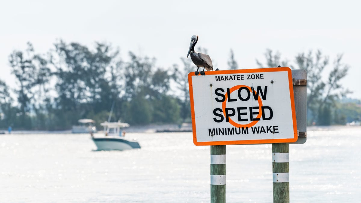 Manatee Boating Protection Zones